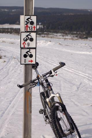 Hala Izerska w lutym na rowerze?